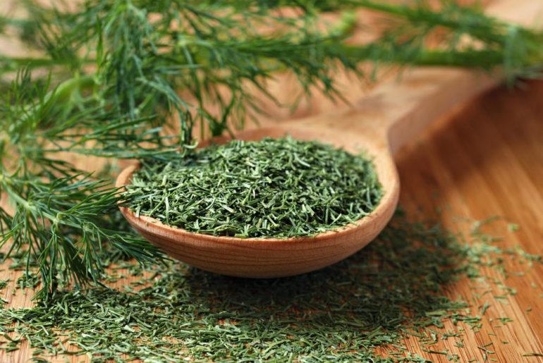 Как заваривать семена укропа при цистите чтобы победить недуг?